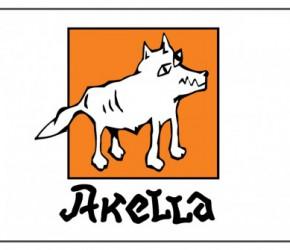 Компания «Акелла» под угрозой банкротства