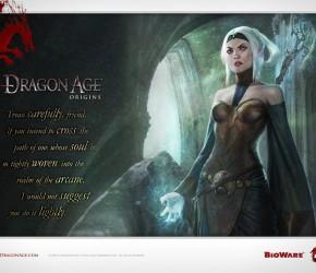 Прохождение Dragon age origins